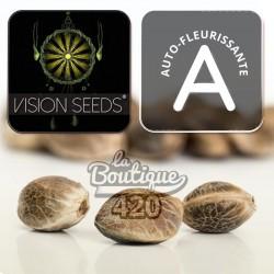 Vision Kush Automatique