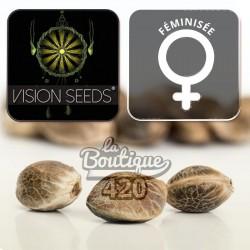 Vision Cookies Féminisée
