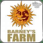 Graines Barneys Farm de collection de chènevis pour une sélection partagée