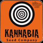 Kannabia une banque de graines de collection exceptionnelles en vente