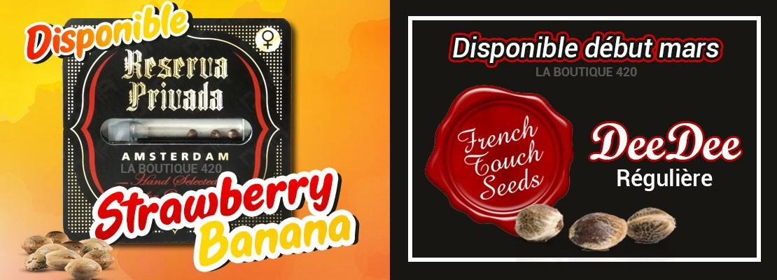 Variétés Strawberry Banana féminisée de Reserva Privada et DeeDee régulière de FTS de nouveau disponibles