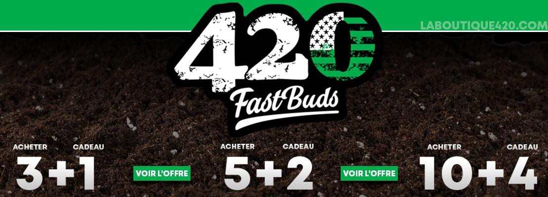 Graines cadeaux sur toutes les variétés Fast Buds 3+1  5+2 et 10+4