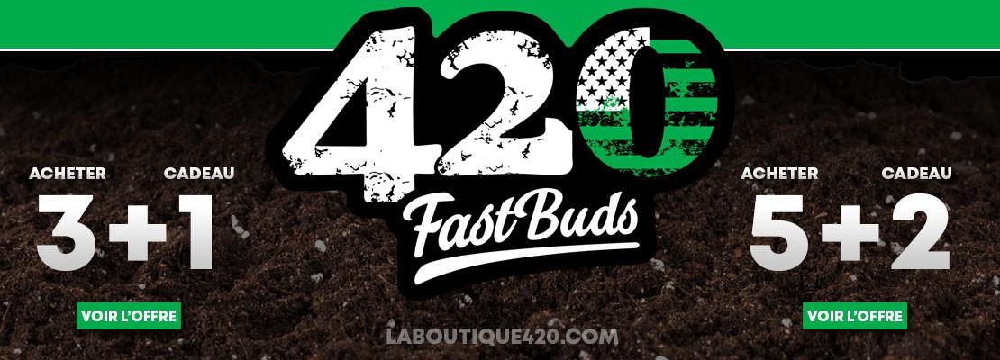 Graines cadeaux sur toutes les variétés Fast Buds 3+1 et 5+2